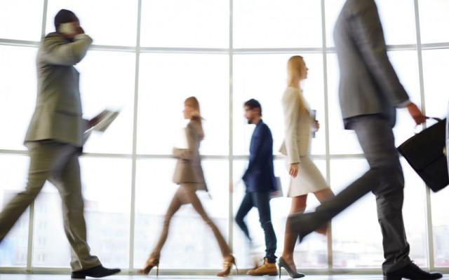 Profils  des cadres que vont recruter les entreprisesCDM.