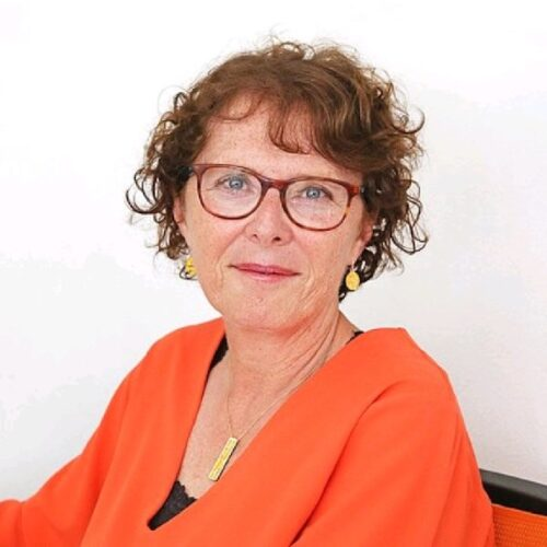Sophie Jullian, Lyon présidence de PULSALYS